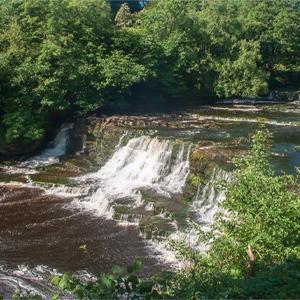Dales Walk: Wensley to Aysgarth & Aysgarth Falls