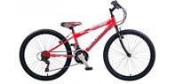"""24"""" Wheel Bikes (Age 9 - 11)"""