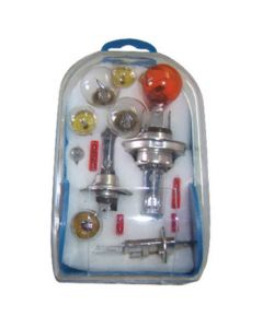 12-Piece Car Bulbs & Fuses Set