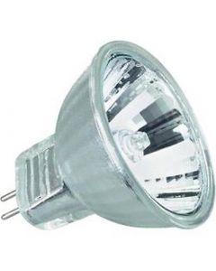 Dichroic Bulb 12V 10W - MR16 Base