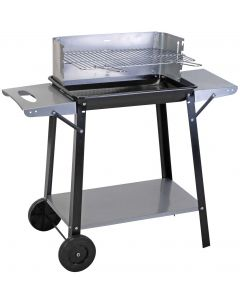 Rectangular Trolley Barbecue