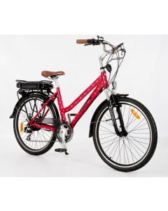 Roodog Polka Dot Electric Bike