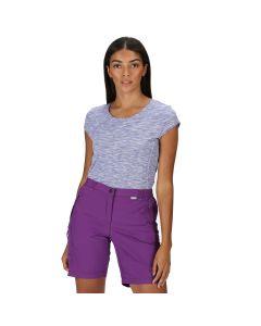 Regatta Chaska II Women's Hiking Shorts - Plum Jam