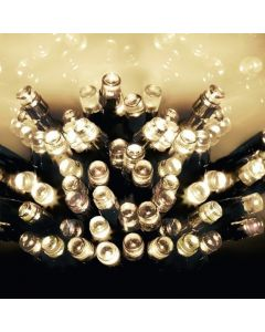 600 Multi Action Battery-Operated LED Warm White Christmas Lights