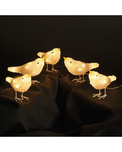 Snowtime 5 Acrylic Birds With 100 Warm White LED Lights